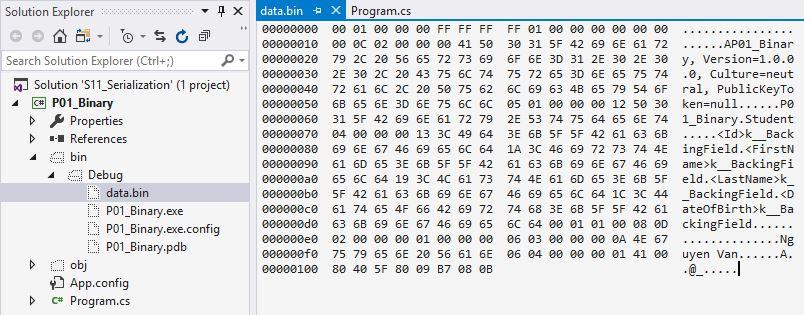 nội dung file dữ liệu binary serialization
